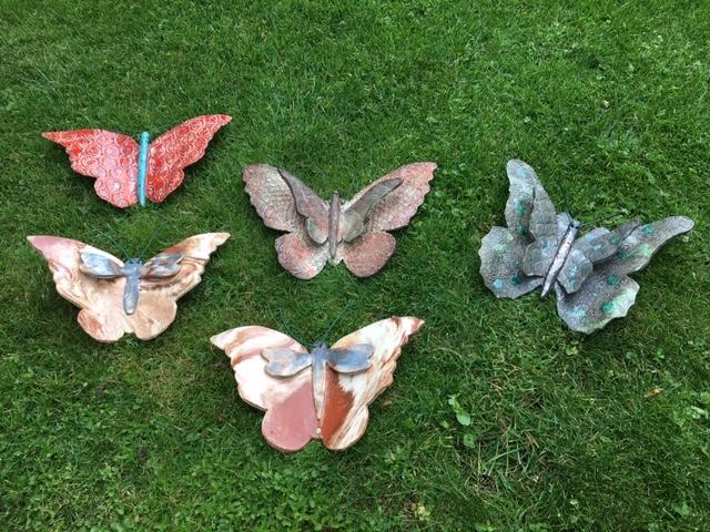 Vlinders in allerlei soorten en maten